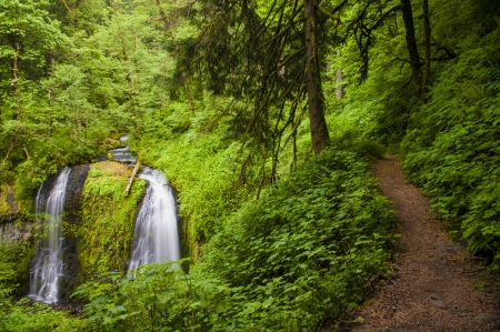 Trail by Upper Elowa Falls, waterfalls in Columbia Gorge, Oregon photo