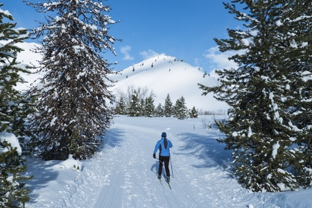 Cross-country skier on a perfect winter day in Idaho Stock Photo