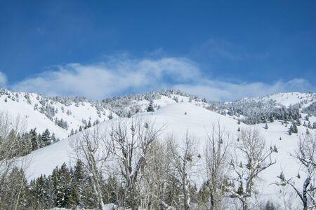 完璧な冬の日に雪を覆われた丘をアイダホ州