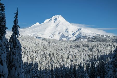 Mount Hood covered in winter snow, Oregon Stock Photo