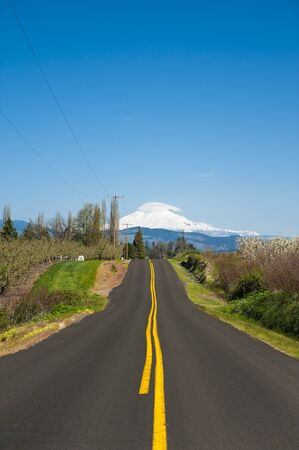 adams: Rural road through Hood River Valley, Mt. Adams in background