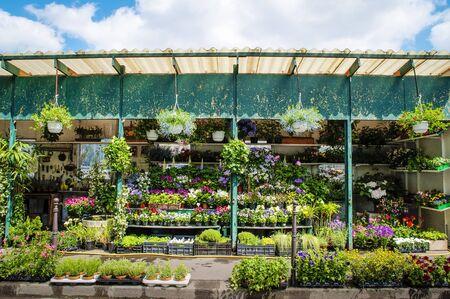 beauty shop: Outdoor flower shop in Paris, France Stock Photo