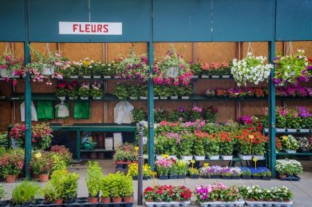 flower market: Outdoor flower shop in Paris, France Stock Photo