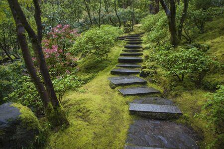 Stone stairway in a Japanese garden