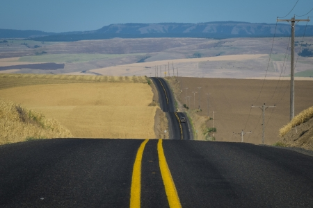 Road through wheat fields ready for harvest in Washington State Stock Photo