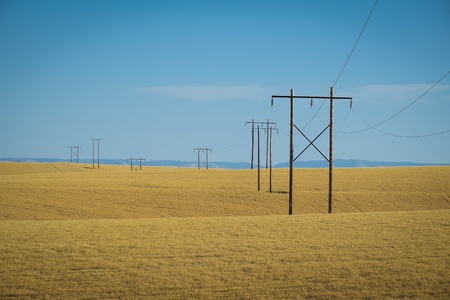 washington state: Wheat fields and power lines in eastern Washington state