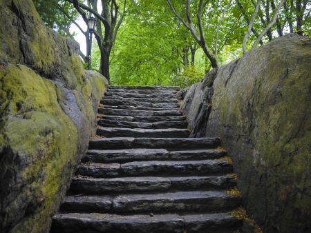 damp: Damp scalinata di pietra in Central Park, New York City