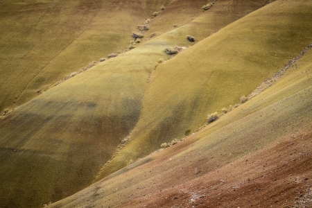 arroyo: Abstract desert shapes and colors in Painted Hills, Oregon