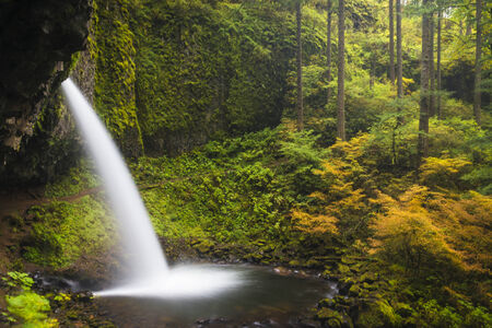 Ponytail falls in autumn, in the Columbia Gorge of Oregon Stock Photo - 22760936