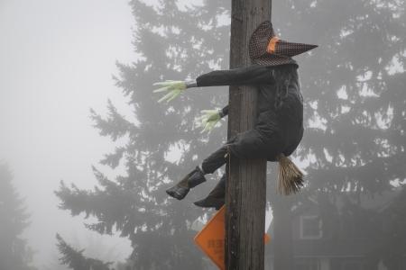 Stuffed Halloween witch crashing into a telephone pole