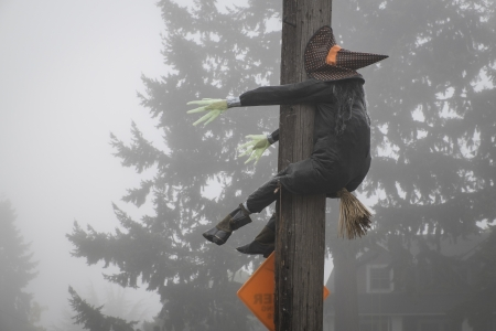 Stuffed Halloween witch crashing into a telephone pole