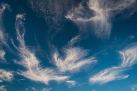 cirrus: High, bird-shaped Cirrus clouds in blue sky Stock Photo
