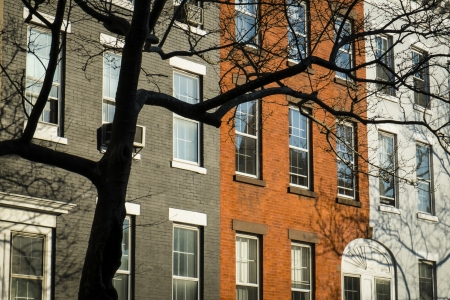 multifamily: Old apartment building and tree branches, New York City