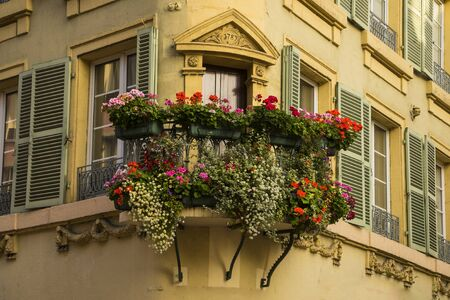 flower boxes: Flower boxes hanging from Windows in Colmar, France