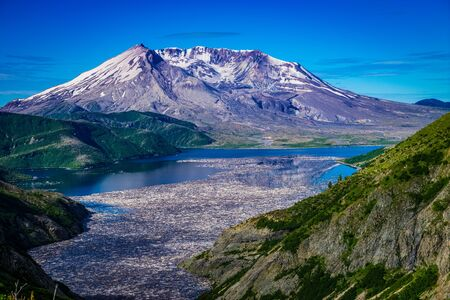 Spirit Lake and floating logs on the north side of Mount Saint Helens