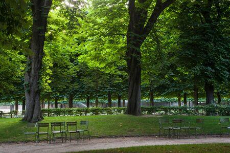 Bomen, stoelen en banken in de tuin van Luxemburg, Parijs, Frankrijk Stockfoto