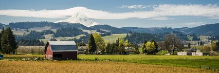 Red barn among apple orchards below a snowy mountain, Hood River Valley, OR Stock Photo