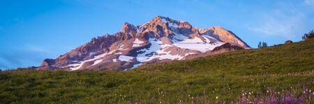 Sunset glow on wildflowers and Mt. hood, Oregon