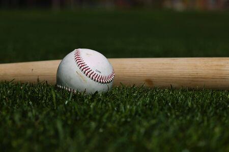 Baseball on the green grass of a ball field Stok Fotoğraf - 3950735