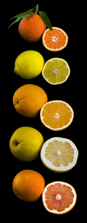 Citric Fruits Collection