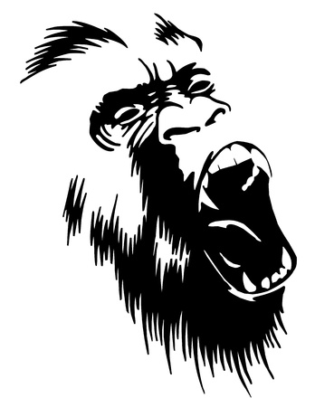gorila: Roaring Gorilla