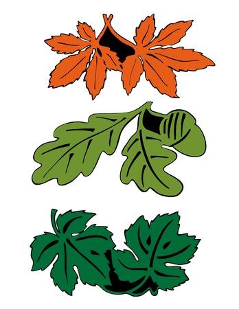 Leaves in pair Stock Vector - 17030152