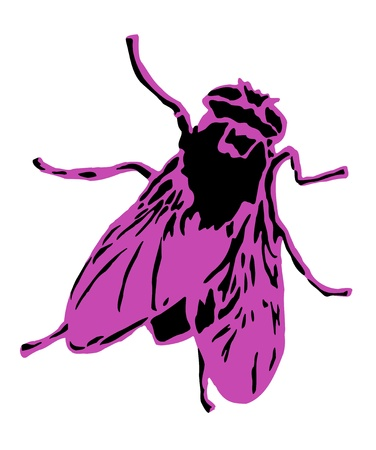Pink Fly Stock Vector - 17290538