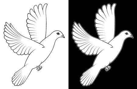 paloma caricatura: Blanca Paloma