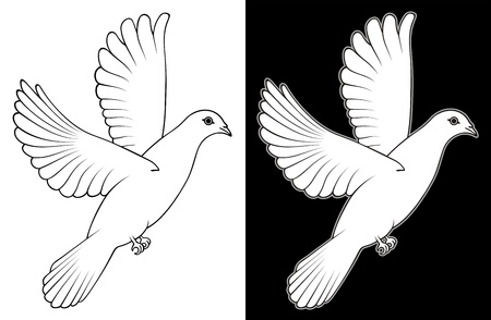 White Dove Stock Vector - 17290503