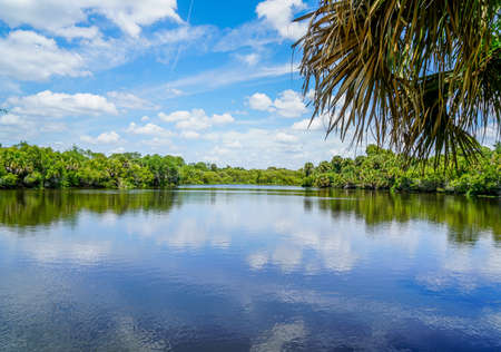 A day at Deere Prairie Park in south Florida. Banco de Imagens