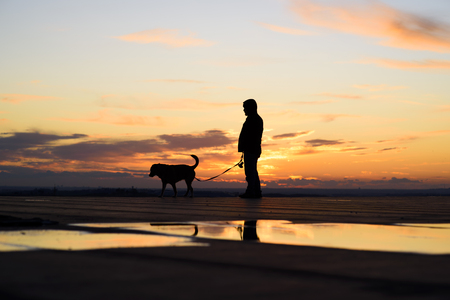 Silhouette of man with his dog at sunset on background