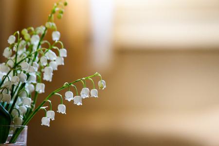 White Trush Flower (Convallaria majalis) o Lily Flower