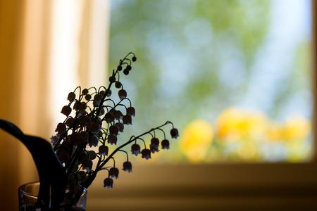 White Trush Flower (Convallaria majalis) o Lily Flower Imagens