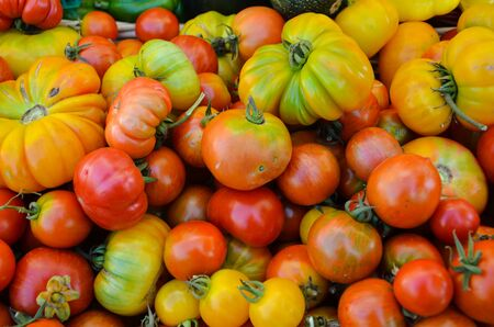 heirloom: Heirloom Tomatoes at the Farmers Market