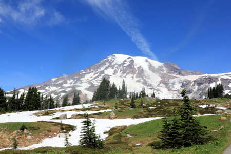 Mt. Rainier from alpine meadows photo