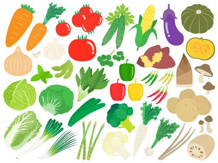 Illustration set of vegetables