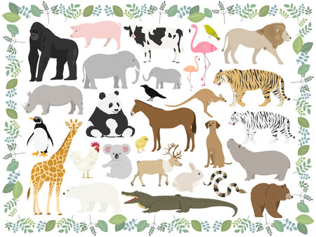 Animal illustration set
