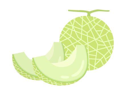 Melon Standard-Bild - 126403087