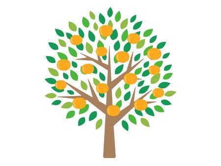 Illustration of a tangerine tree.