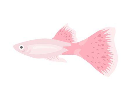 Tropical fish Illustration