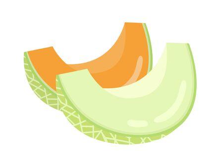 Illustration of cut melon Standard-Bild - 128222281