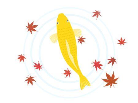 Illustration of a swimming carp Illustration