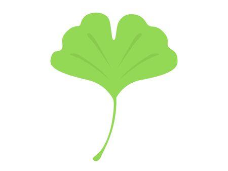 Ginkgo Leaf Illustration Reklamní fotografie - 132045679