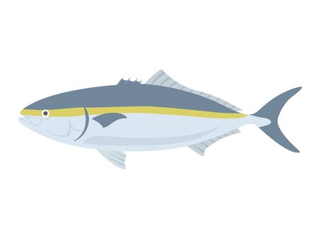 Illustration of the fish