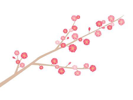 Illustration of a plum tree