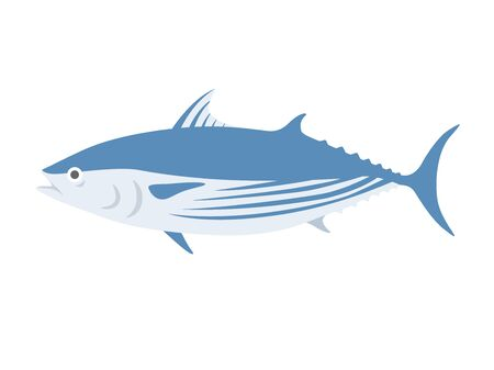 Illustration of bonito fish