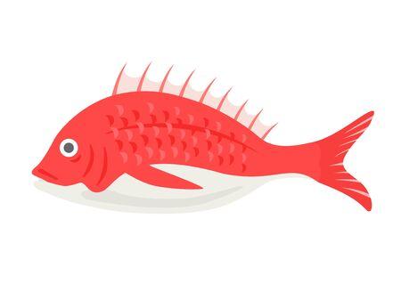 Illustration of the rose fish Illusztráció
