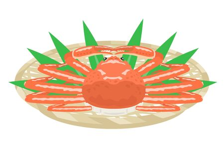 Illustration of the crab