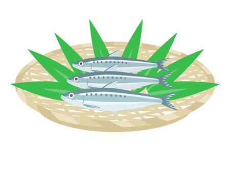 Illustration of sardines