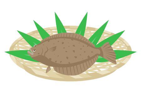 Illustration of flounder